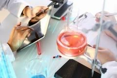 Ein m?nnlicher Chemiker h?lt Reagenzglas des Glases stockbilder