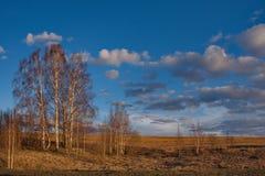 Ein malerischer Frühlingssonnenuntergang über den sibirischen Feldern lizenzfreie stockfotografie