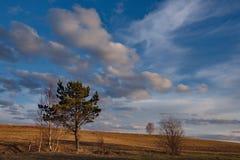 Ein malerischer Frühlingssonnenuntergang über den sibirischen Feldern lizenzfreies stockfoto