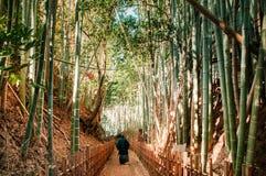 Ein Mann in den Samurais kostümieren das Gehen in Bambuswald, Kirschblüte-Stadt, stockfotos