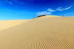 Ein Mann, der auf die Oberseite der Sanddüne mit Windmuster und blauem Himmel des freien Raumes steht Stockfoto