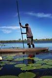 Ein Mann, der ein canoa in Botswana, Afrika reitet lizenzfreies stockbild