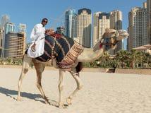 Ein Mann, der ein Kamel auf den Strand reitet Lizenzfreie Stockbilder