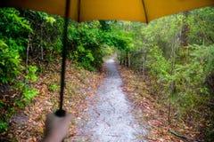 Ein Mann, der einen Regenschirm auf einem Weg im Regen hält Lizenzfreies Stockbild