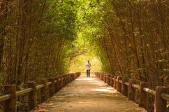 Ein Mann, der in einen Wald läuft Stockbild