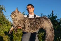 Ein Mann, der Gläser und Overall trägt, hält eine enorme, graue Maine Coon-Katze lizenzfreie stockfotografie