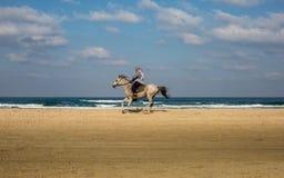 Ein Mann, der ein Pferd auf den Strand reitet lizenzfreies stockbild