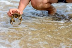 Ein Mann fing eine schöne Krabbe in den stürmischen Wellen des Schwarzen Meers stockbild