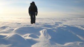 Ein Mann geht durch einen Schneesturm in der schneebedeckten Wildnis stock footage