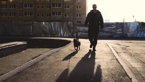 Ein Mann geht mit einem Hund auf dem Bürgersteig in einer Stadt in den Strahlen der Sonne stock footage