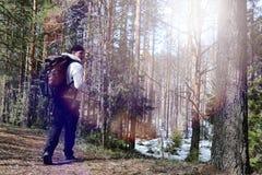 Ein Mann ist ein Tourist in einem Kiefernwald mit einem Rucksack Ein wandernder tr Stockfotos