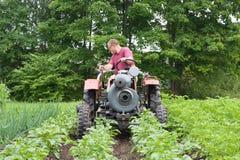 Ein Mann kultiviert Gemüsebetten Lizenzfreies Stockfoto