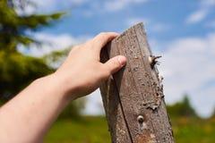 Ein Mann möchte über einen Zaun auf dem Gebiet springen Nahaufnahmeansicht der Hand Lizenzfreie Stockfotografie