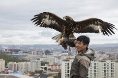 Ein Mann mit altai Steinadler mit Stadt von Ulaanbaatar am Hintergrund Stockfotografie