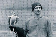 Ein Mann mit einem Falken Stockbild