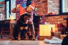 Ein Mann mit einem Hund Lizenzfreie Stockbilder