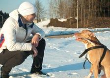 Ein Mann mit einem Hund stockbilder