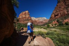 Ein Mann mit seinem Baby sind Trekking in Nationalpark Zion, Utah, USA stockbild