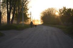 Ein Mann mit Ziegen stockfotografie