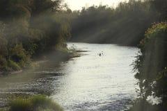 Ein Mann mitten in den anziehenden Fischen des Flusses Stockbilder