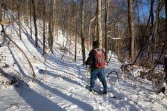 Ein Mann-Schneeschuhe durch das Holz Stockbild