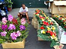 Ein Mann verkauft Zierpflanzen und Blumen und Weihnachtsdekors in Dapitan-Markt Stockbild