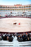 Ein Matador ist Hauptausführendes im Stierkampf Stockfoto