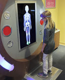 Ein Mädchen lernt über das Skelett am Entdeckungs-Kind-` s Mus Lizenzfreie Stockfotos