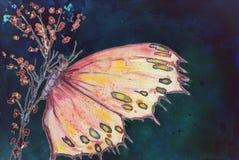 Ein mehrfarbiger Schmetterling, der auf einer Kirschblüte-Niederlassung gegen einen nächtlichen Himmel sitzt stockfoto