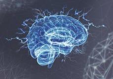 Ein menschliches Gehirn auf blauem Hintergrund Stockbilder