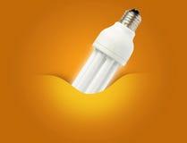 Ein modernes energiesparendes Glühlampeideal für Ökologie Lizenzfreie Stockfotos