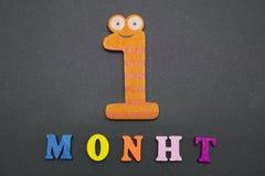 Ein Monat Lizenzfreie Stockbilder