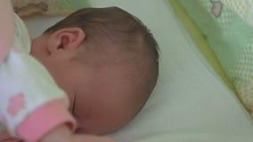 Ein Monats-altes Baby-Schlafen stock video footage