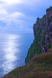 Ein Mongkey auf der Klippe Stockbild