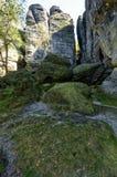 Ein Moos umfasste die Landschaft, die von den Felsen und von der grünen Vegetation enthält lizenzfreie stockfotografie