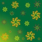 Ein Muster von Ahornblättern Stockfotos