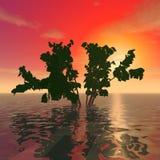 Ein mysteriöser Baum Stockbild