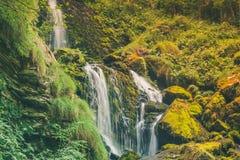 Ein mystischer Wasserfall und eine Vegetation Lizenzfreie Stockfotografie