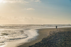 Ein Nachmittag am Strand Stockfotografie