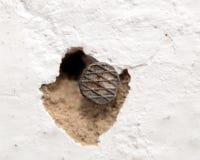 Ein Nagel in der Wand Makro Stockbild
