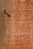 Ein Nagel in einer hölzernen Planke Stockfotos