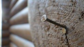 Ein Nagel im Strahl Stockfotografie