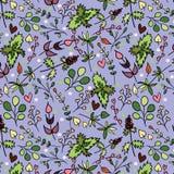 Ein nahtloses Muster mit verschiedenen Kräutern. Stockbilder