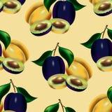 Ein nahtloses Muster von den mehrfarbigen Beeren der Pflaume Stockfotografie