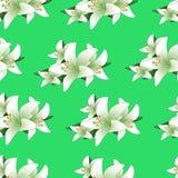 Ein nahtloses Muster von den weißen Lilien Stockfotos