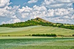 Ein natürlicher Hügel nahe Libochovice stockfotografie