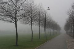 Ein nebelhaftes roud mit Straßenlaternen und Bäumen lizenzfreie stockfotos