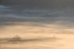 Ein nebeliger Morgen in einer Spitzenberglandschaft Lizenzfreie Stockbilder