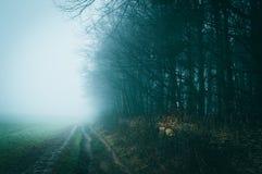 Ein nebeliger Wintertag entlang einem Weg auf Bredon-Hügel in der englischen Landschaft mit einem atmosphärischen, schwermütig re lizenzfreie stockfotografie
