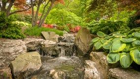 Ein Nebenfluss mit einem kleinen Wasserfall, Grün umgibt stockfotografie